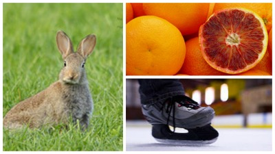 Oranges, Rabbits & Ice Skating: 3 Ways to Change Your Energy and Get More Done!